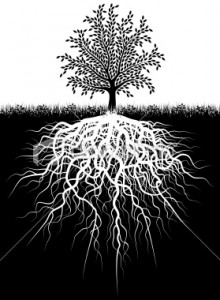 Tree with deep roots